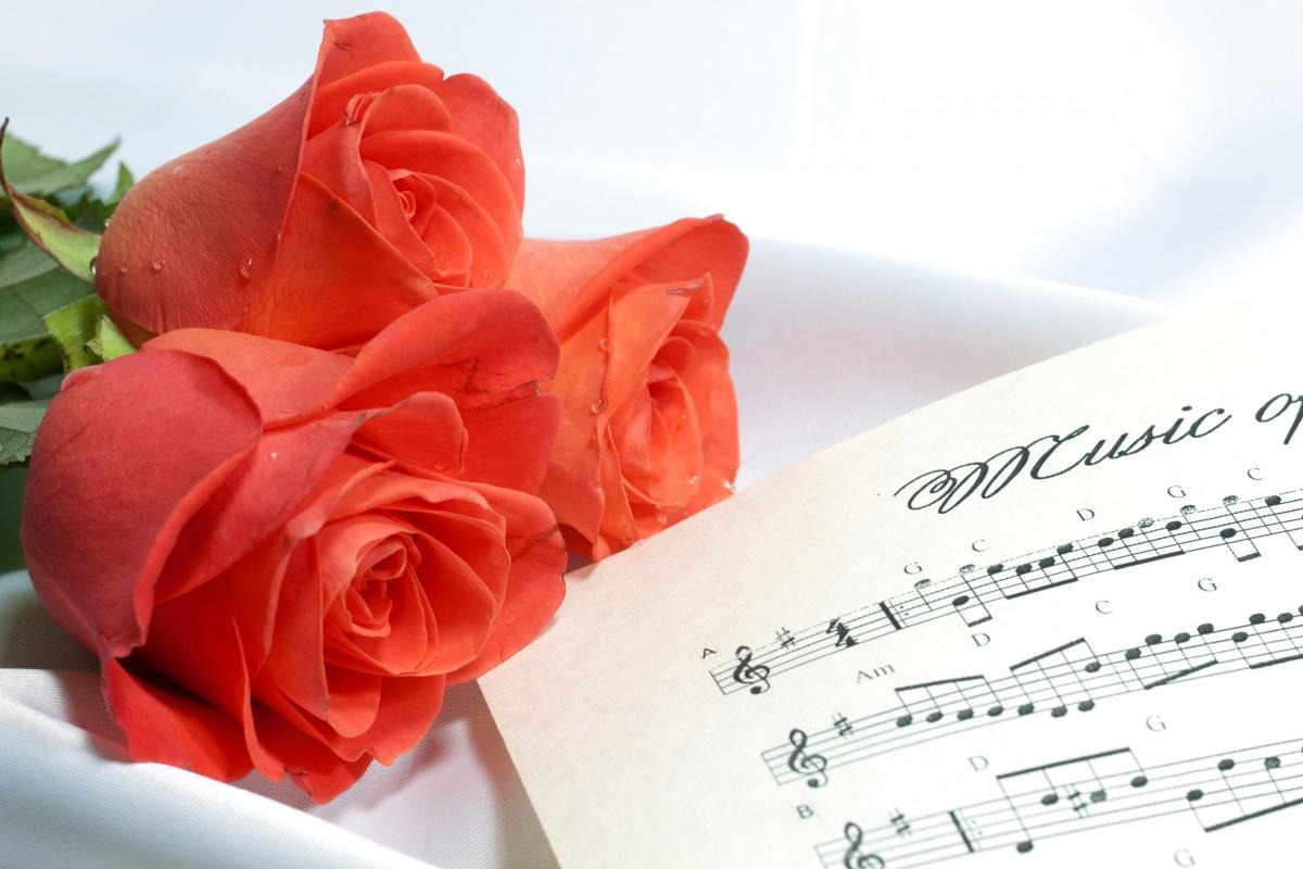 Музыкальные поздравления с днем рождения директору