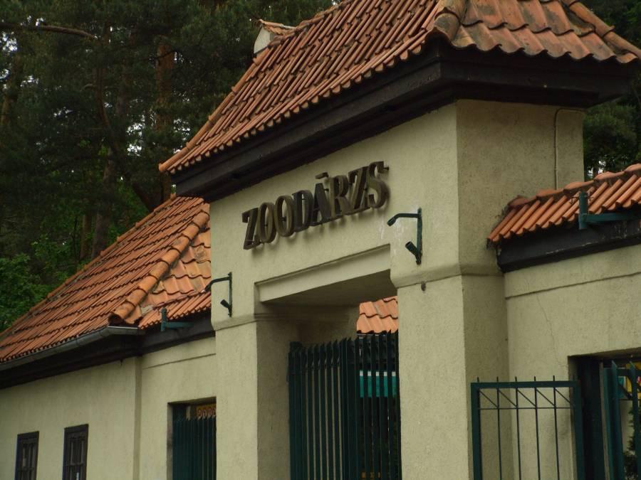 Планируется изменение расценок на посещение зоопарка