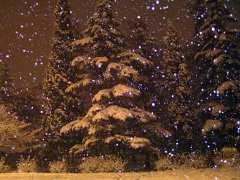 Фото к новости В ночь на 21 ноября в Латвии пройдут снегопады