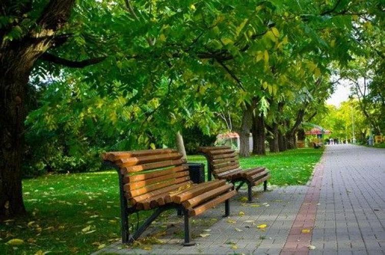 Рижская дума собирается привести в порядок парк Гризинькалнса и Зиедоньдарзса